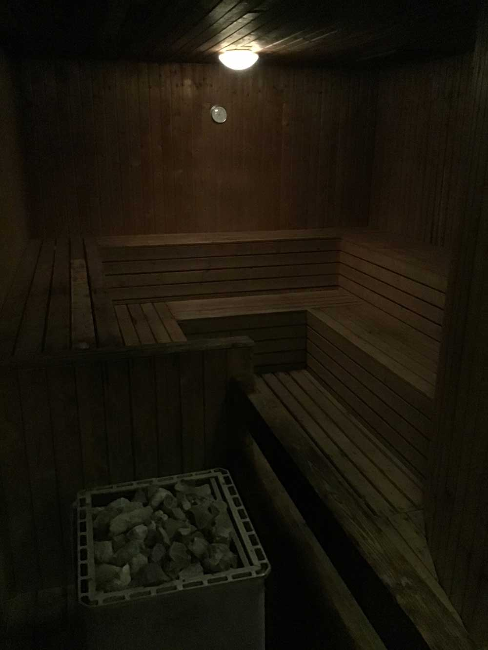 Regency Art Hotel sauna