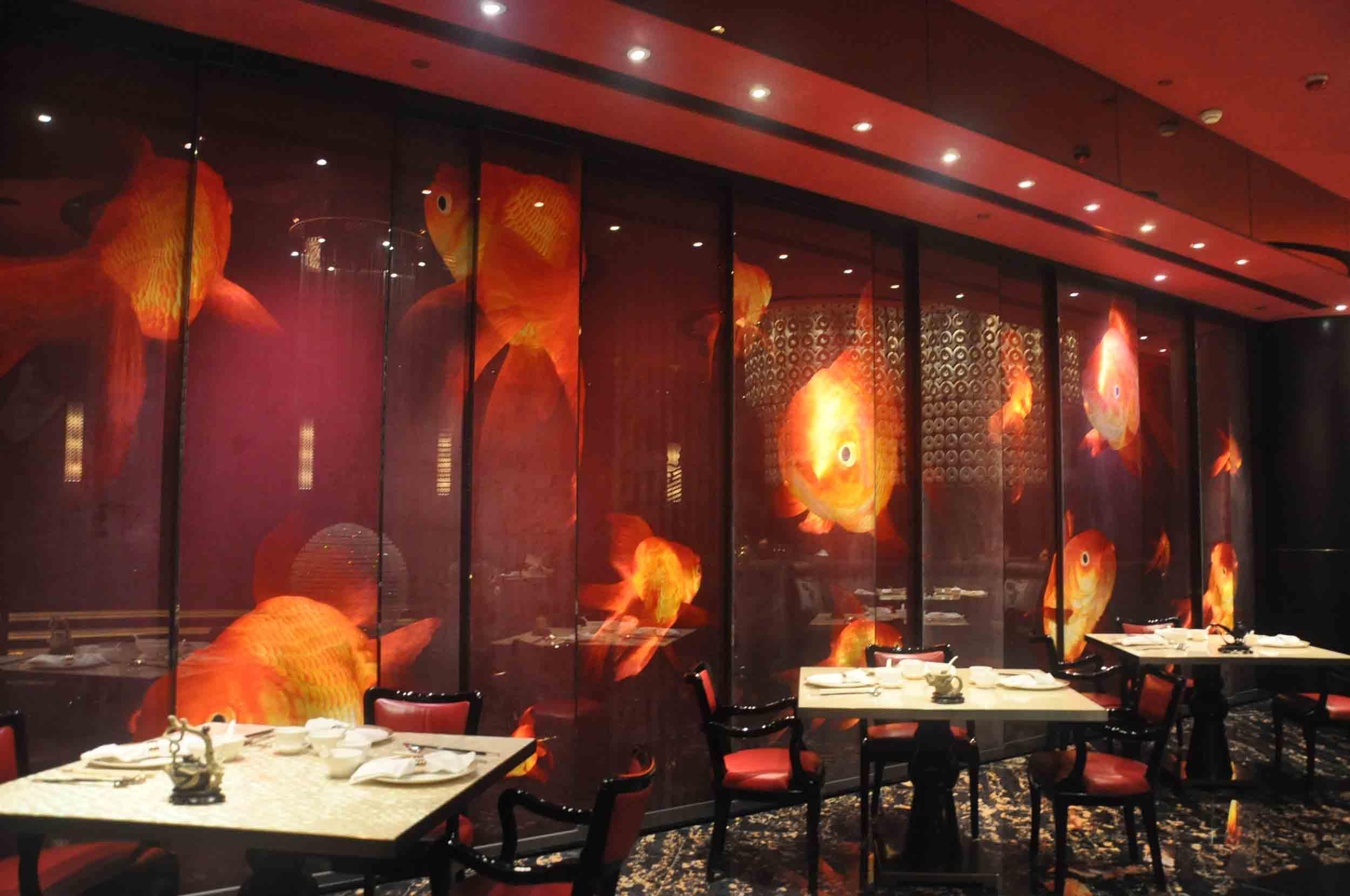 8 Restaurant Macau wall of fish