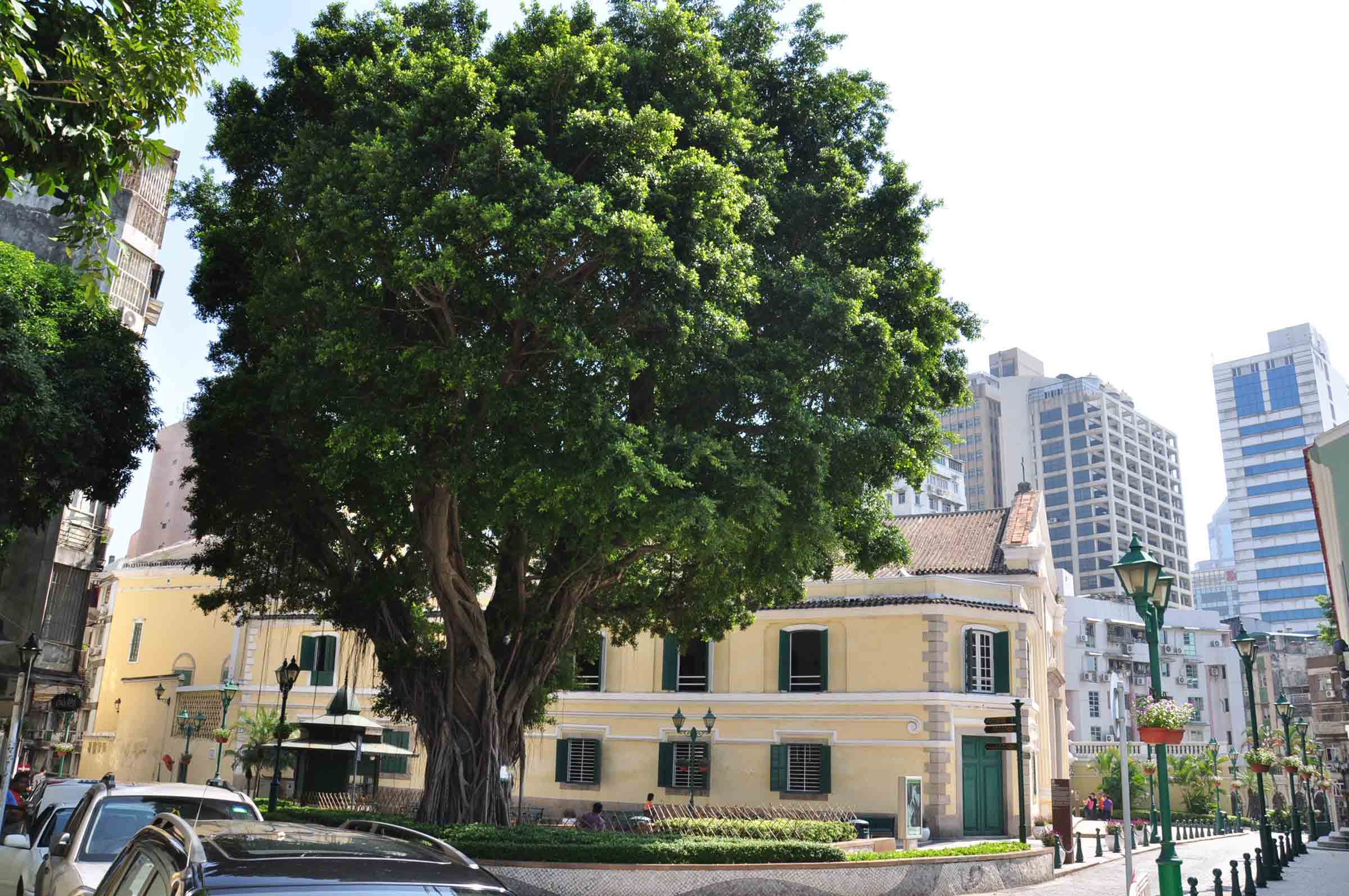Macau World Heritage Site: St. Augustine's Square
