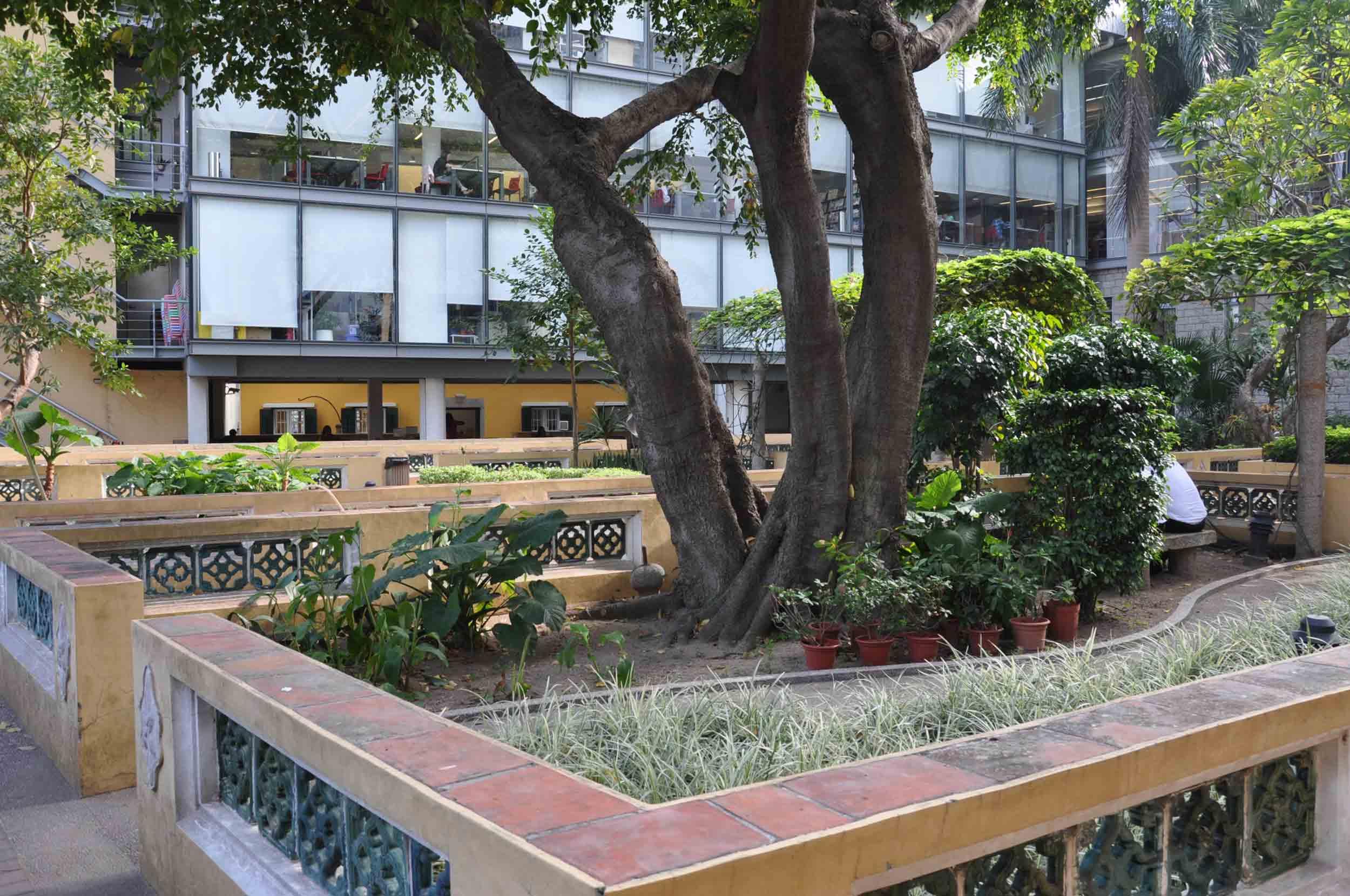 Sir Robert Ho Tung Library rear garden