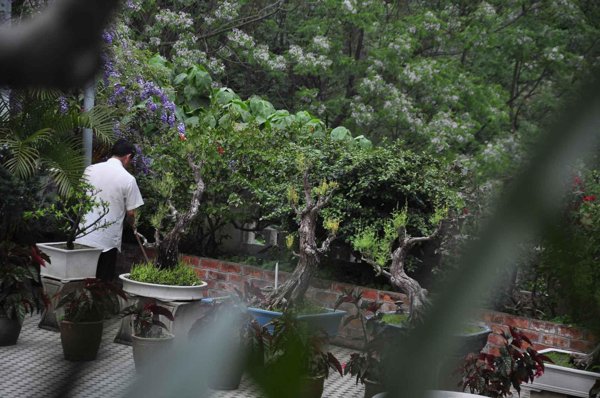 Pou Tai Un Monastery gardener