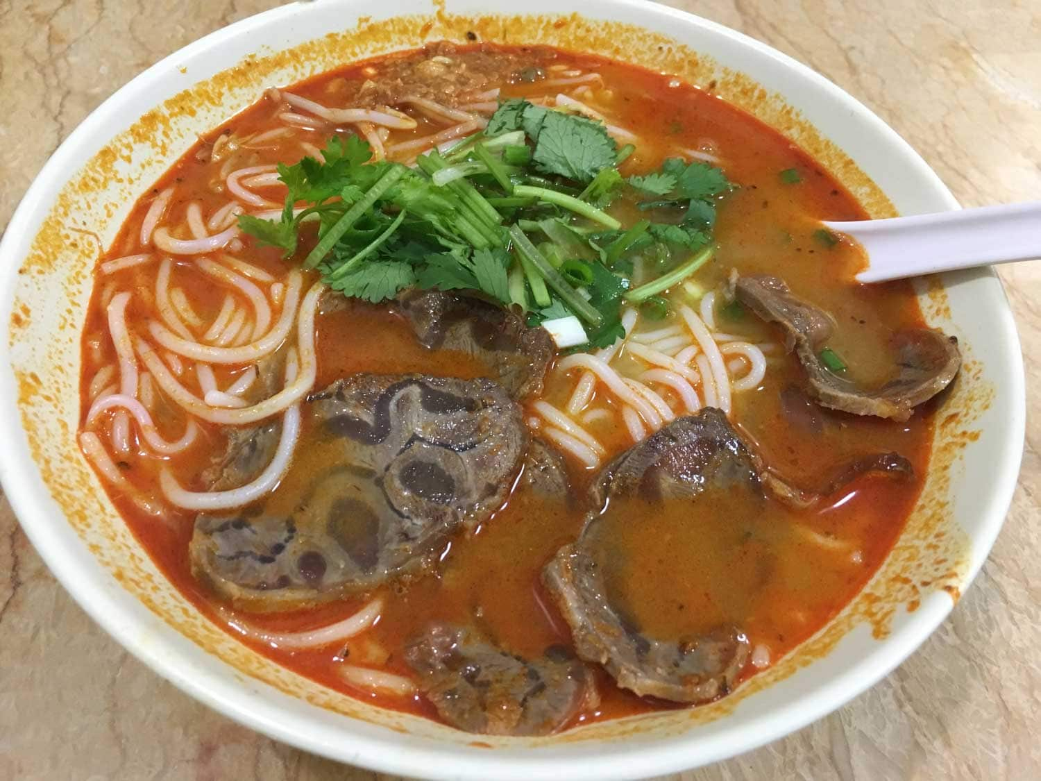 Ya Xiang Burmese Hot and Sour Beef Soup Noodles